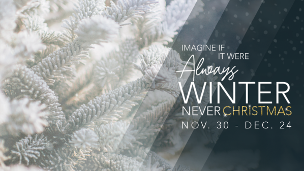 Series: Always Winter Never Christmas